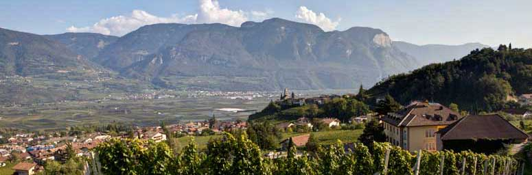 The wine village of Termeno, in South Tyrol