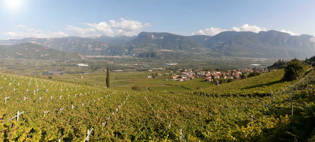 South Tyrol's South, panoramic view of Termeno