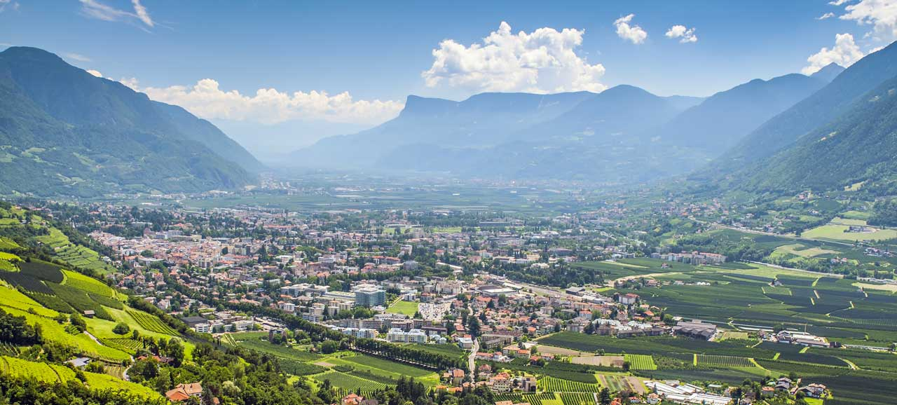 Merano and surroundings embedded in vineyards seen from above