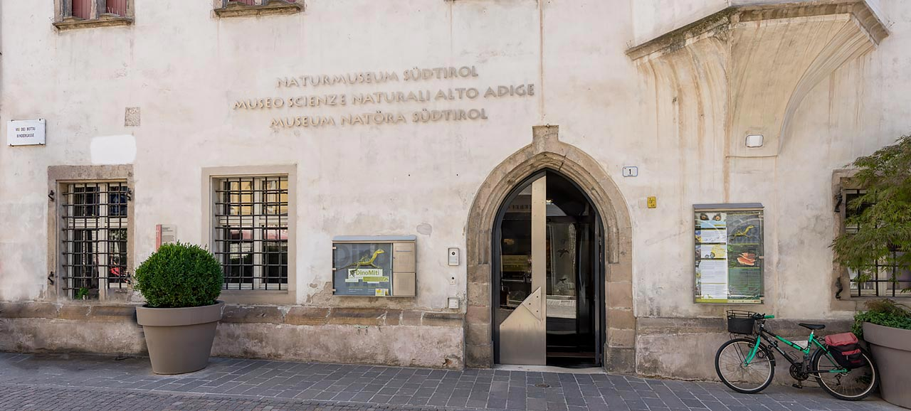 Das Naturmuseum S 252 Dtirol In Bozen