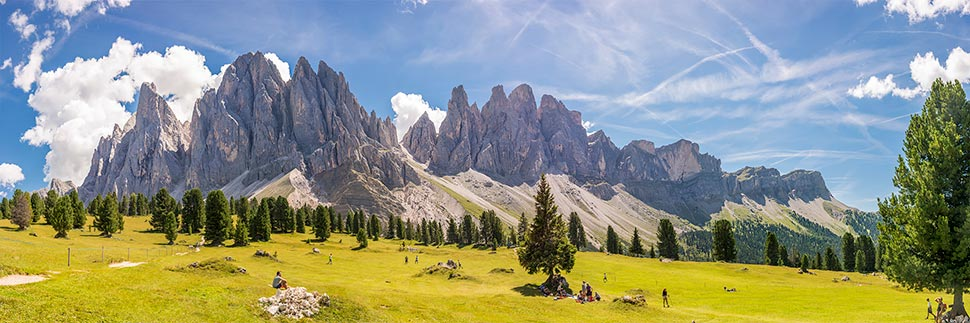 View of a green meadow and behind the Dolomites in South Tyrol during the summer